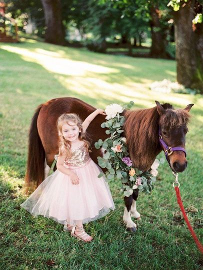 Flower girl with a mini horse