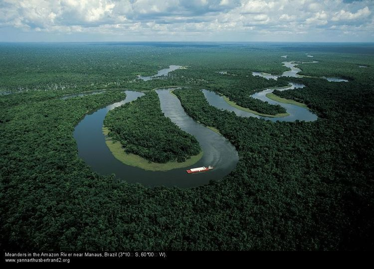 meanders in the amazon river near manaus