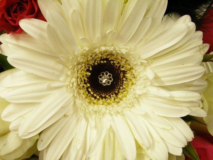 Tmx 1457973655709 Flower6 Akron wedding planner