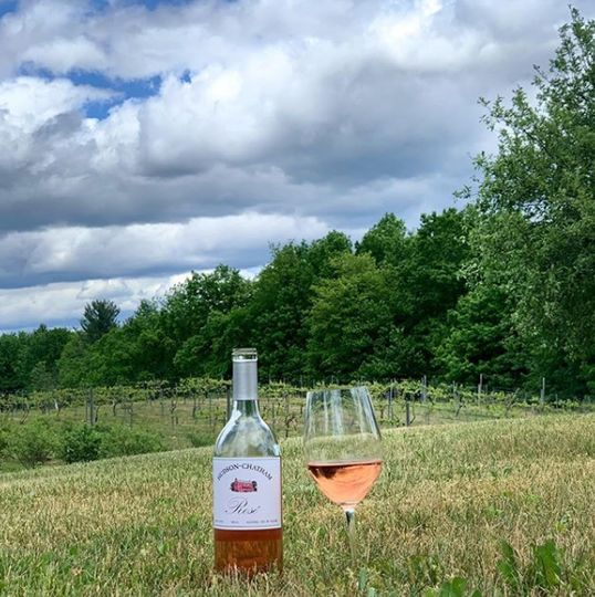 Sustainably-produced vintages