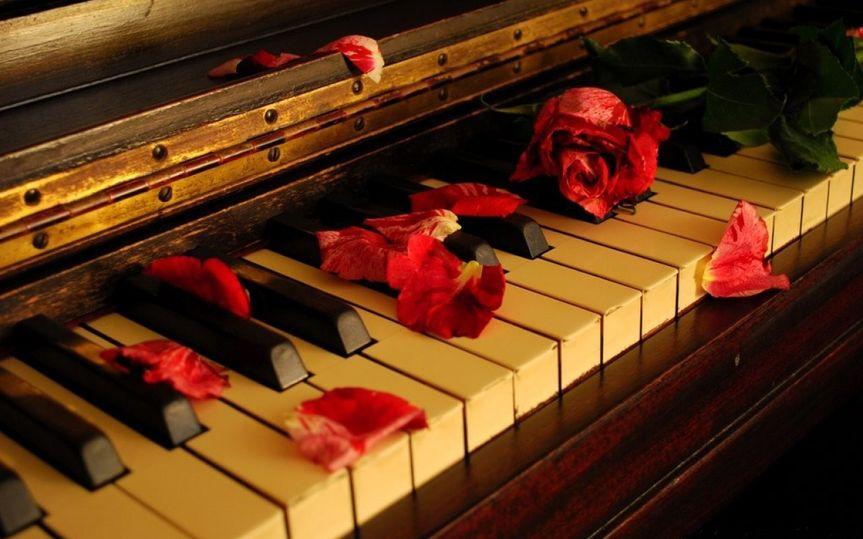 piano rose petal