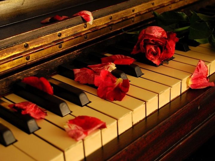 Tmx 1383144008166 Piano Rose Petal Tampa wedding ceremonymusic