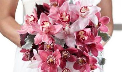 Gordon Boswell Flowers 1