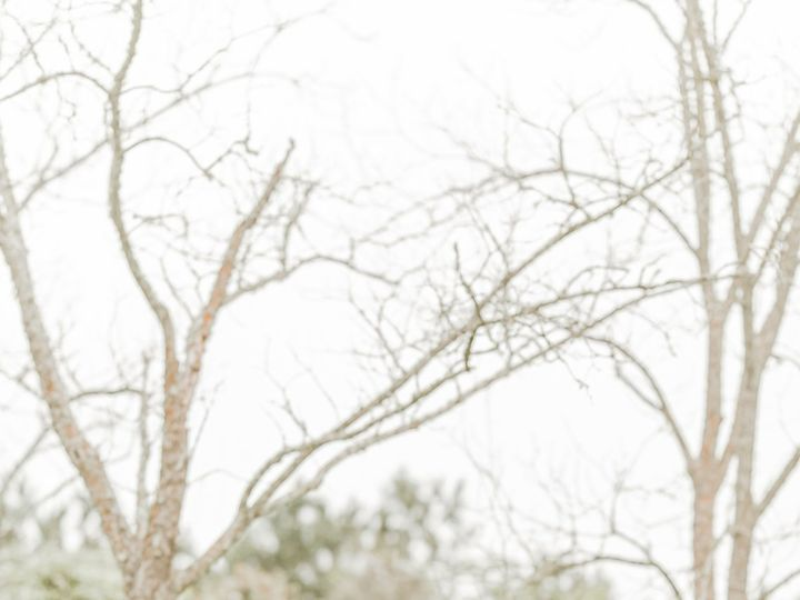 Tmx 200316jessicabri 486 51 981892 159922421626138 Houston, TX wedding photography