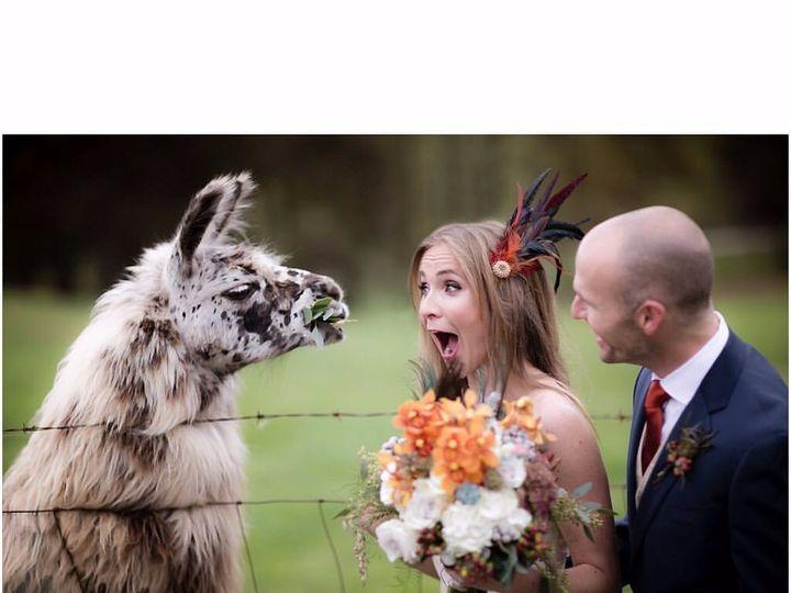 Tmx Img 0213 51 787892 1572556356 Asheville, NC wedding beauty