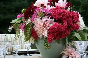 Stems Flower Design