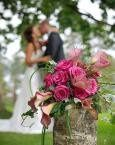 Tmx 1331082211704 Wed2 Kansas City wedding transportation