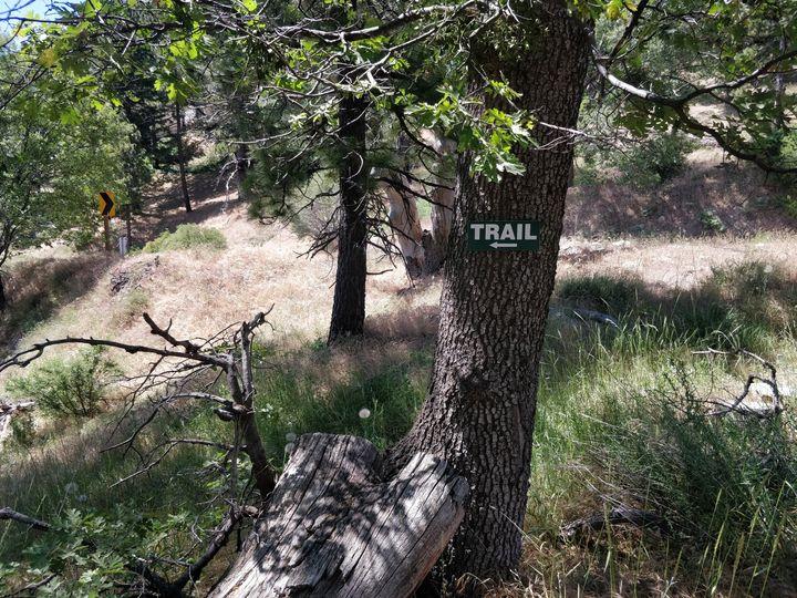 Trails in backyard