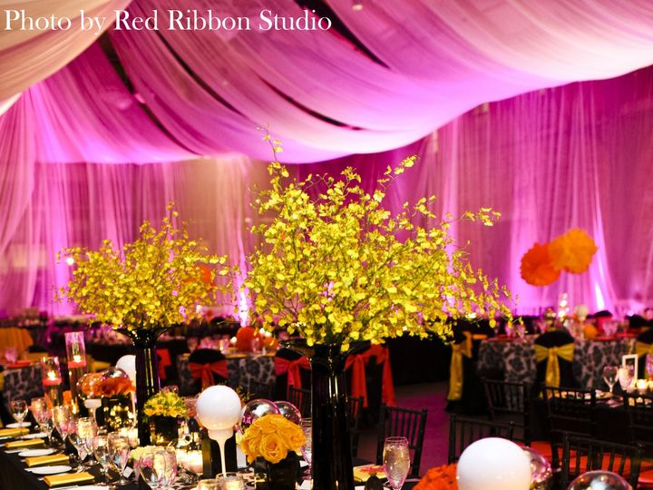 Tmx 1416242953123 Debraalex1146 Minneapolis, MN wedding rental