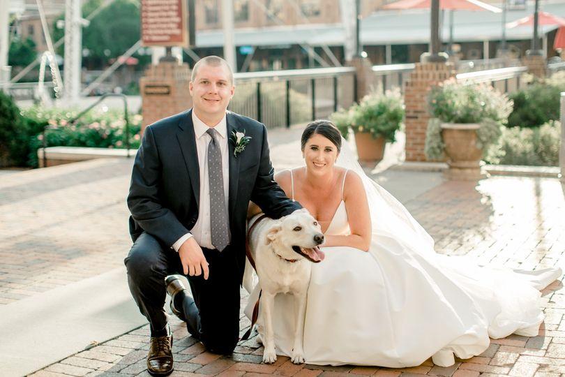 Puppy at wedding!