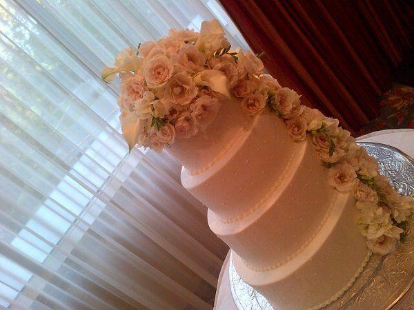 Tmx 1327024033559 Carolscake Spring, TX wedding florist
