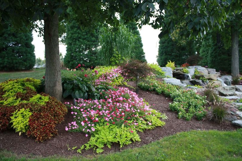 Botanical gardens offer an array of color and textures