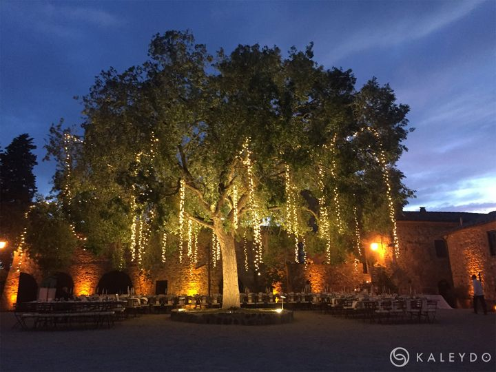 Fairy lights falls