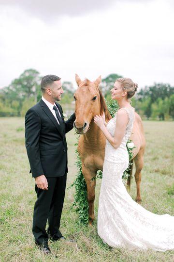 We're a horse farm!