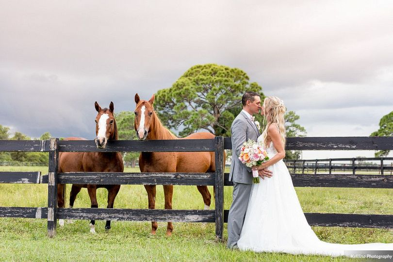 Gorgeous horse ranch
