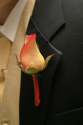 Leonidas rose with rust ribbon wrapped stem