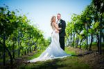 Wilton Brothers Photography image