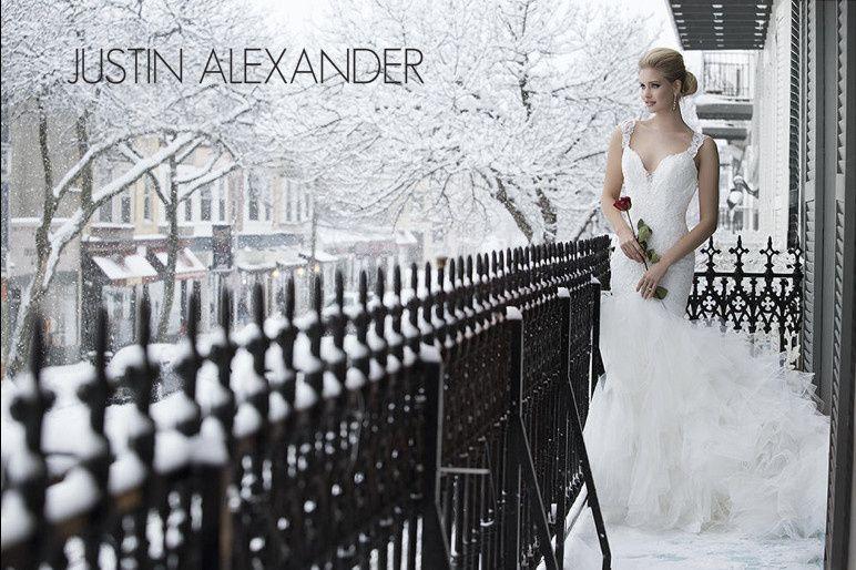 justin alexander 001