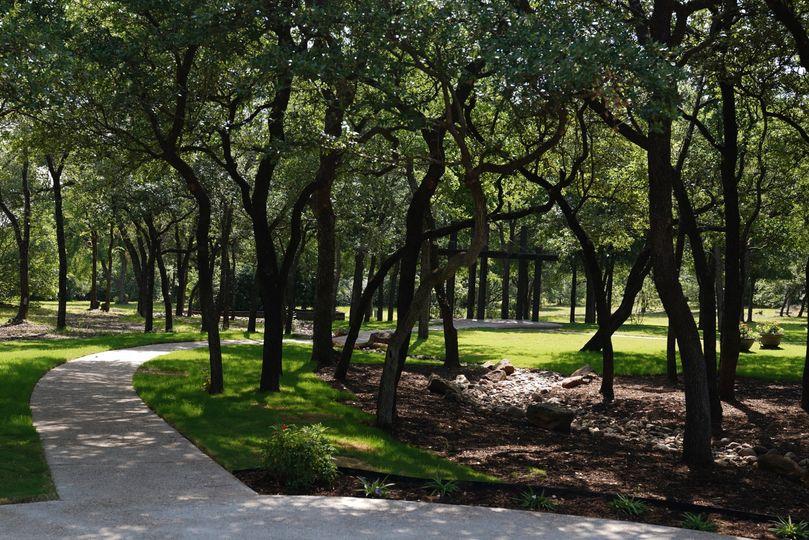 Gorgeous Treeline