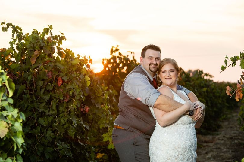 Mettler Vineyards, Lodi CA