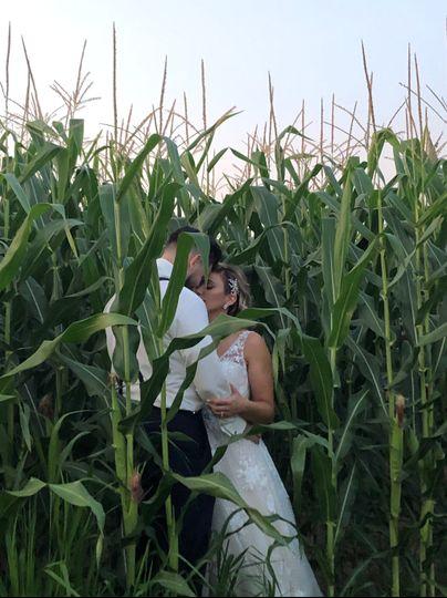 Oh the corn field!