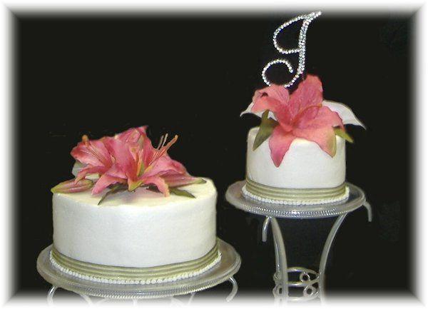Tmx 1227324934344 SagePinklily Clinton, IA wedding cake