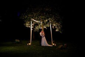 Tree Light Creations