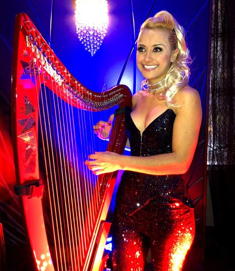 Our amazing harpist