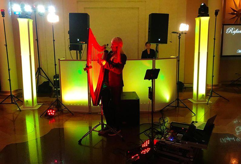 DJ + Electro Harpist