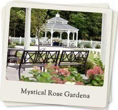 Mystical rose gardens