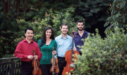 BellaNota Strings