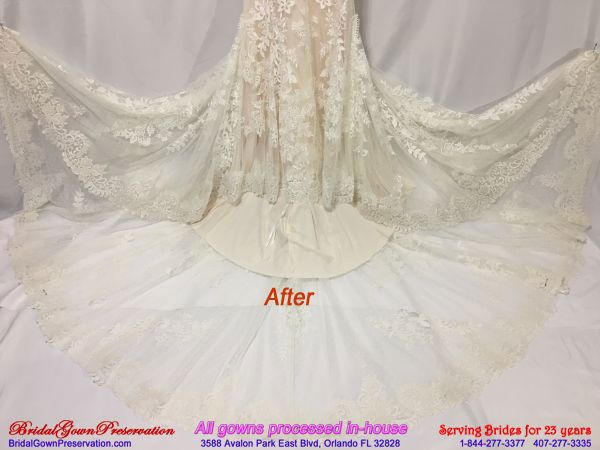 Tmx Wedding Bridal Gown Cleanin After Feb 2019 51 1004903 Orlando, FL wedding dress