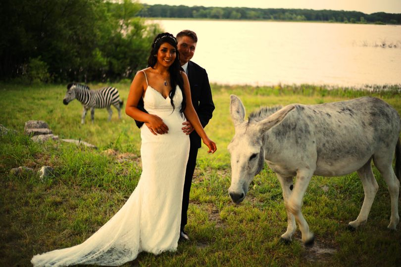 Newlyweds with the animals
