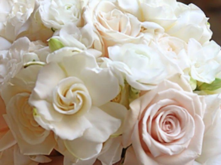 Tmx Scionti 1081 1 Copy 51 2013 158255757767914 Rocky Hill, Connecticut wedding florist
