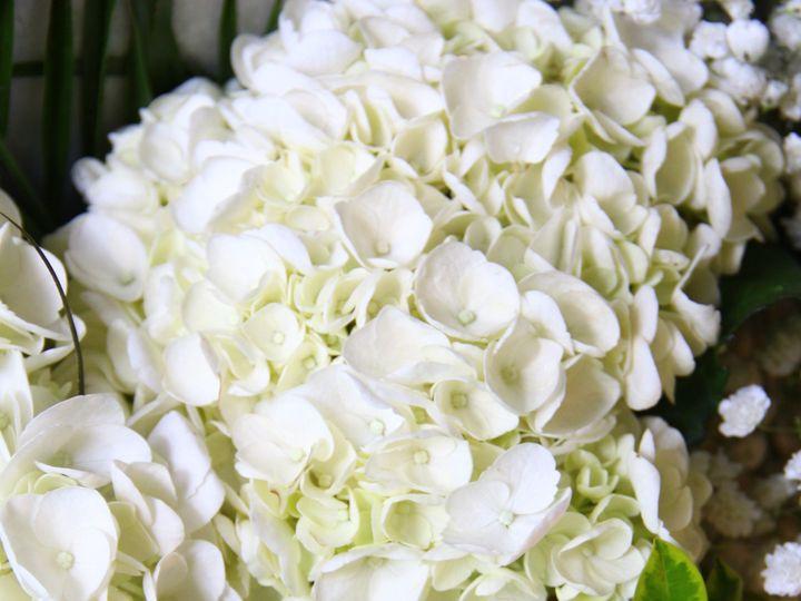 Tmx Img 2098 51 1895013 1573075033 Port Chester, NY wedding florist