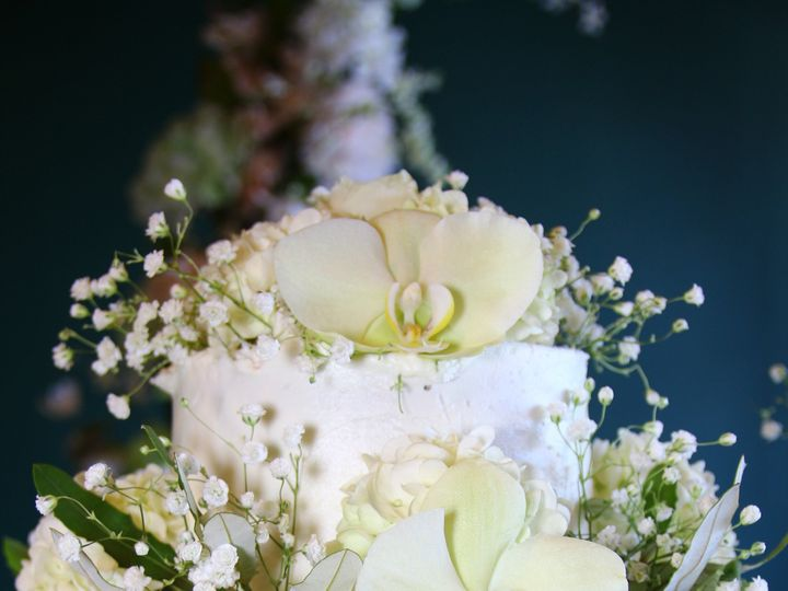 Tmx Img 2131 51 1895013 1573075040 Port Chester, NY wedding florist