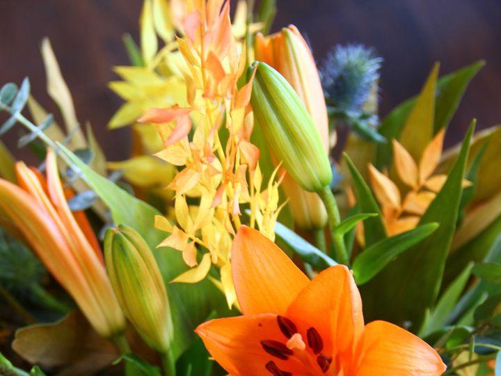 Tmx Img 8333 51 1895013 1573075049 Port Chester, NY wedding florist