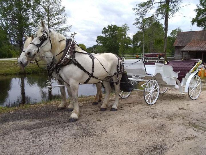 carriage run carriage service 1 51 1008013 1557762604