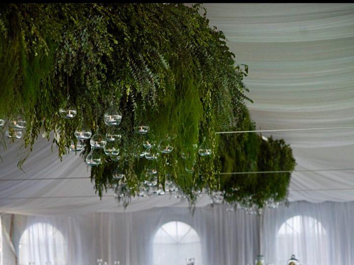Tmx Foto30 51 1971213 159199409467817 Ensenada, MX wedding florist