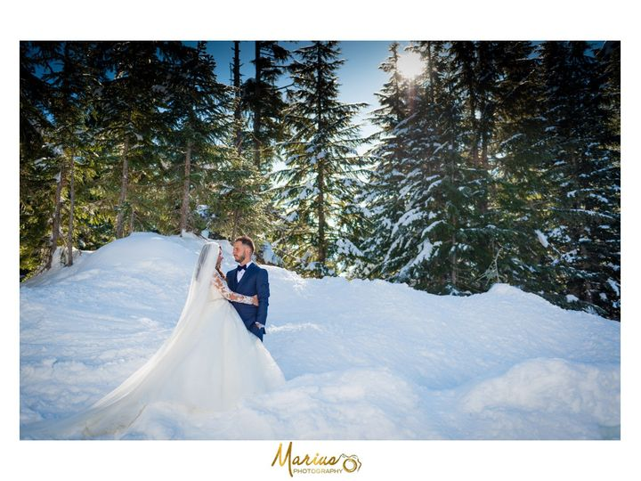 Tmx Snow Wedding Pictures 51 495213 157421088524273 Seattle, Washington wedding videography