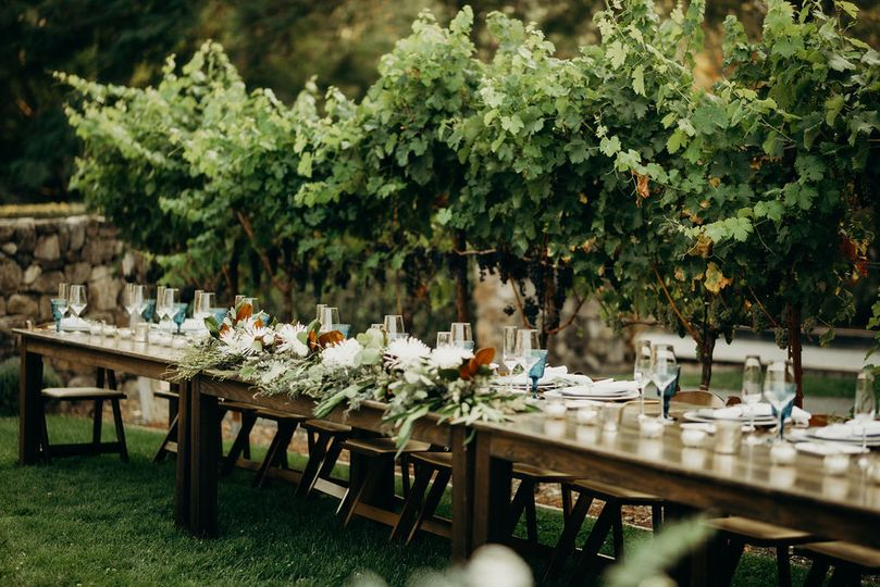 Farm tables in vines