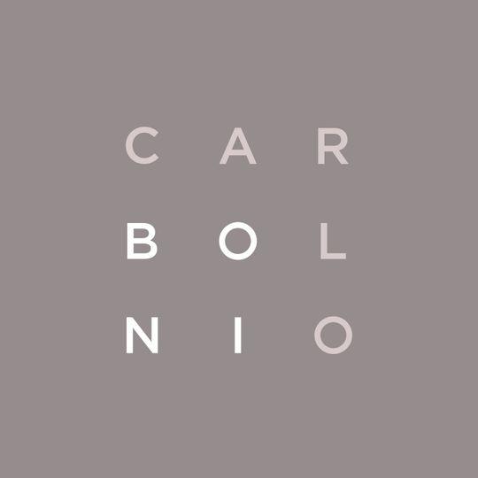 2a83c155e7c76dae Carlo Boni logo