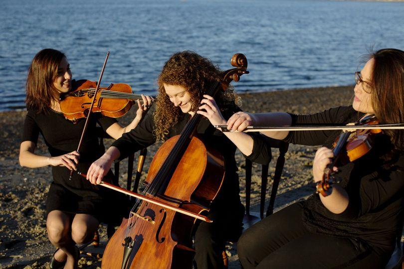 legacy string trio legacy trio 0095