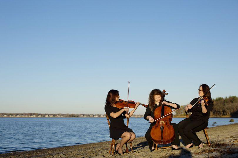 legacy string trio legacy trio 0097
