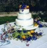 Tmx 1246575155125 PARRYWEDDING1 Davenport, IA wedding cake