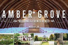 Amber Grove