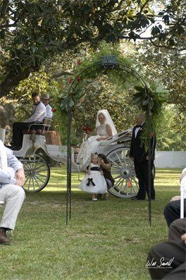 Bride in the carriage