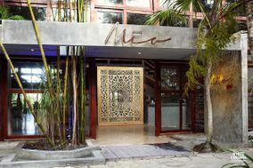 Mía Restaurante & Beach Club