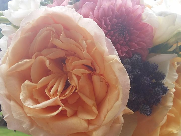 Tmx 1479854934151 20150702133649 Avon, CO wedding florist