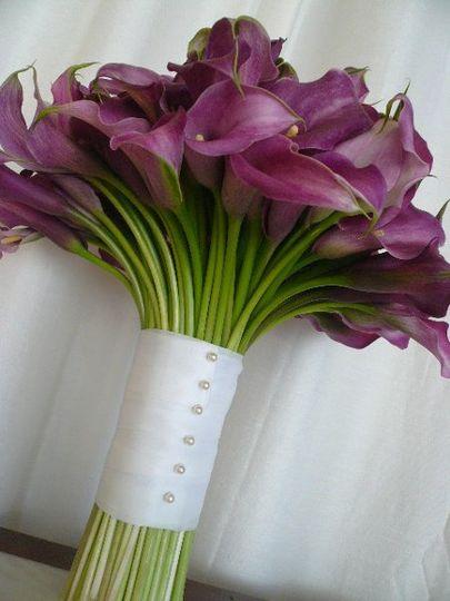 lavendercallas